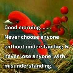 फ़िल्मी - Good morning . . Never choose anyone without understanding & never lose anyone with misunderstanding . - ShareChat