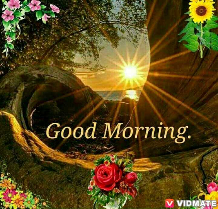 good morning  💝❣️💝 - Good Morning . V VIDMATE - ShareChat