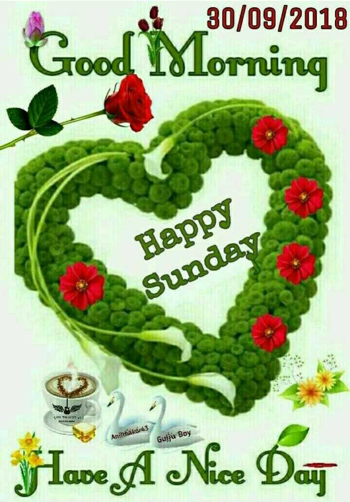 ಶುಭೋದಯ🌅 - 30 / 09 / 2018 Good Morning Happy Sunday II . TH 12 : 41 Anitthakor43 Gujju Boy Have A Nice Day - ShareChat