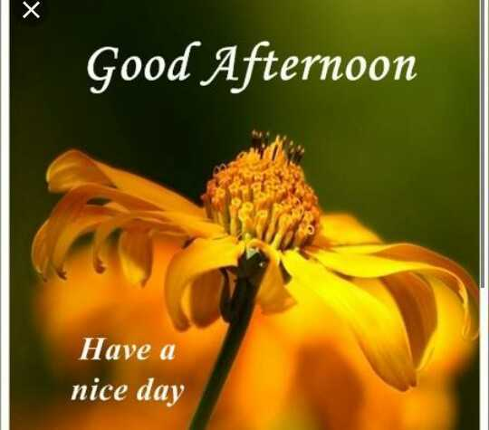 शुभदुपार - Good Afternoon Have a nice day - ShareChat