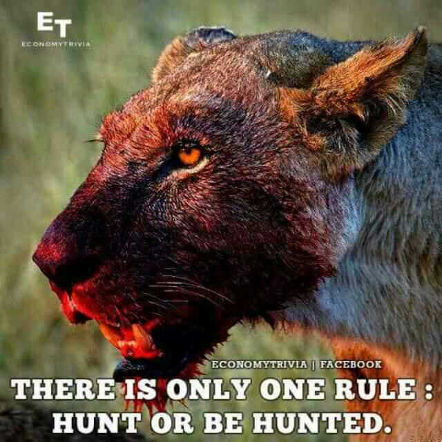 வாழ்க்கை 🌿🌿🌿 - ET ECONOMYTRIVIA ECONOMYTRIVIA | FACEBOOK THERE IS ONLY ONE RULE : HUNT OR BE HUNTED . - ShareChat