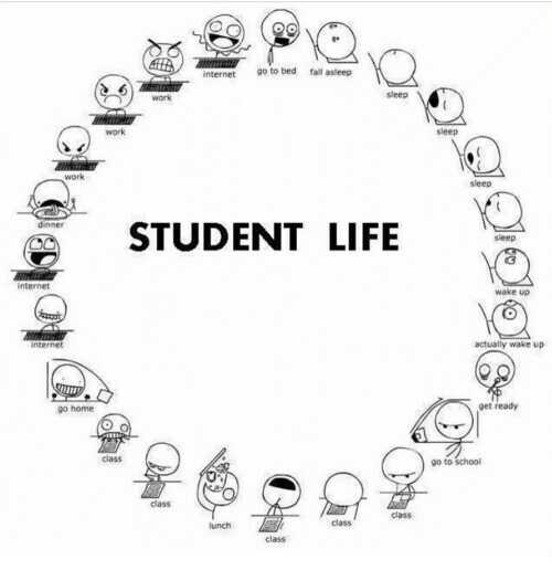 students paridhabangal - go to bed fall asleep work ପା STUDENT LIFE internet ht III go home go to school - ShareChat