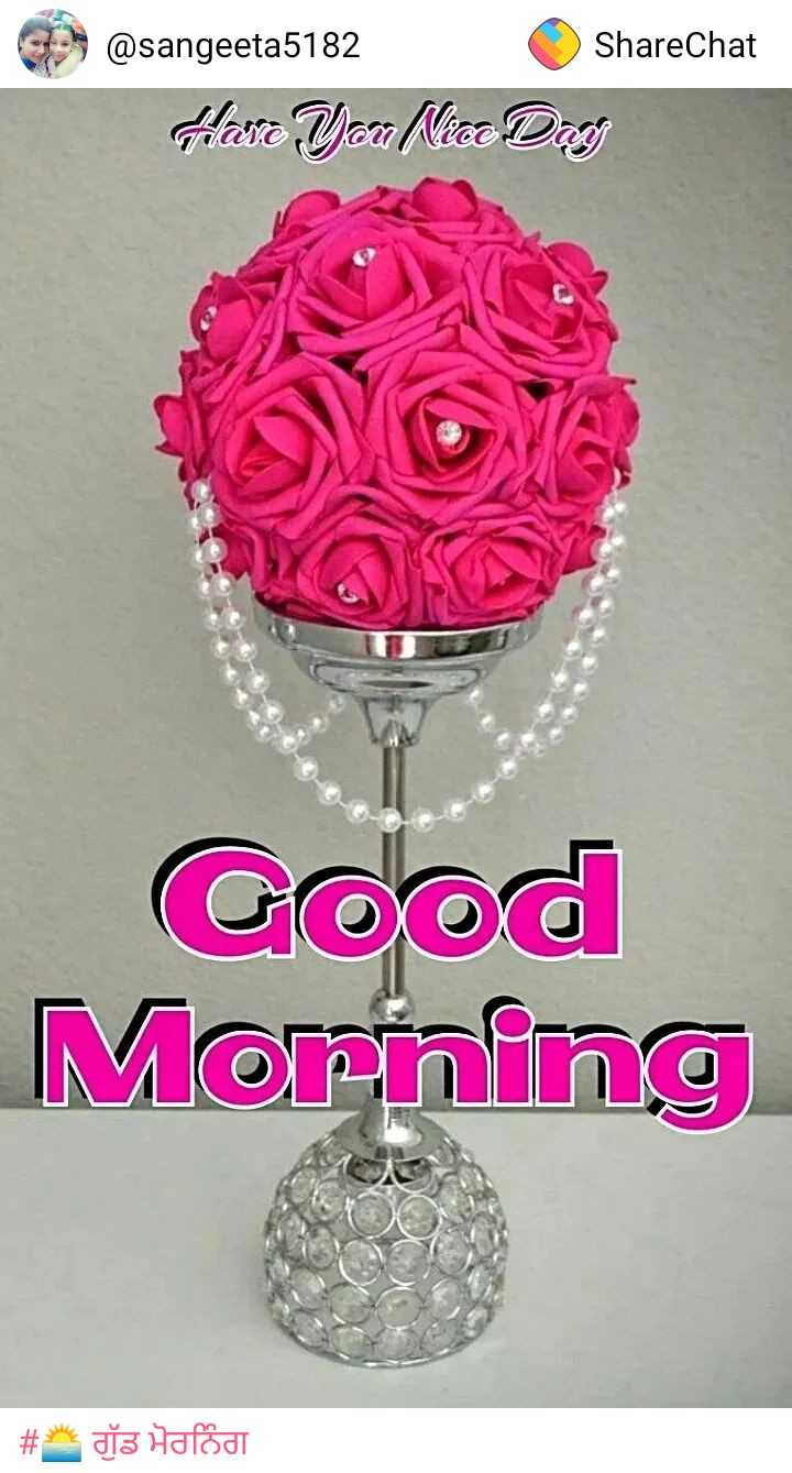 🌞Good Morning🌞 - ShareChat @ sangeeta5182 Hare You Nice Day Good Morning # * dts Hafod - ShareChat