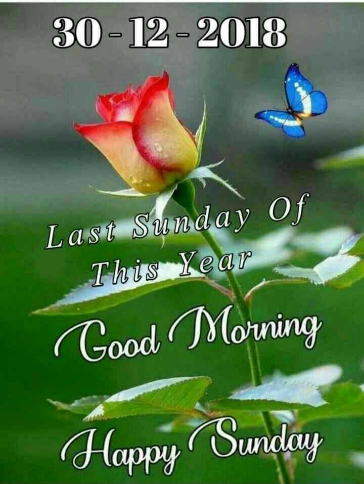🌞সুপ্রভাত - 30 - 12 - 2018 Last Sunday Of This Year Good Morning Happy Sunday - ShareChat
