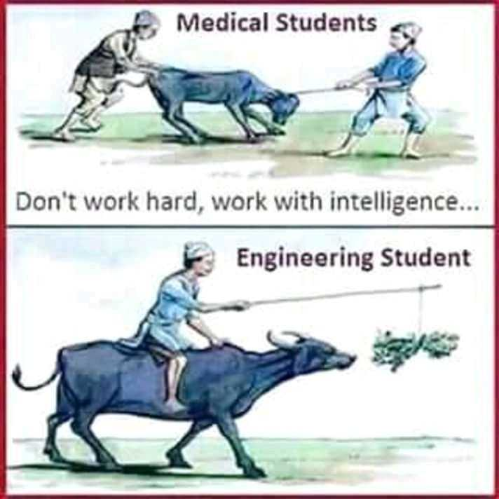 Who are you Thoughts - Medical Students Don ' t work hard , work with intelligence . . . Engineering Student - ShareChat