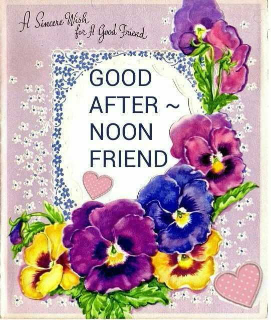 good afternoon my friends - A Since With Good Friend GOOD AFTER ~ NOON FRIEND - ShareChat