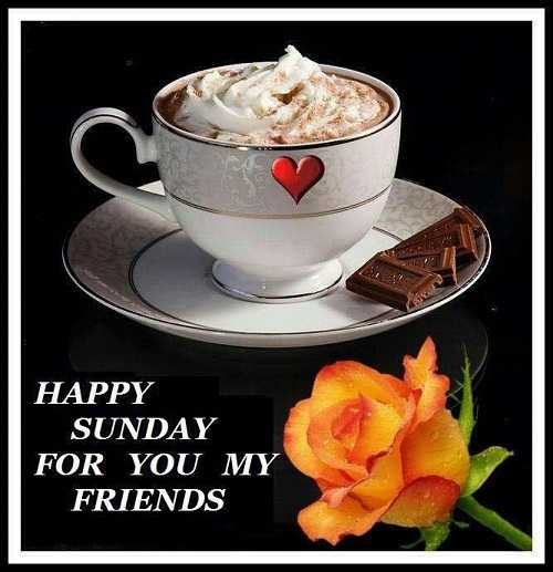 Good_morning - HAPPY SUNDAY FOR YOU MY FRIENDS - ShareChat