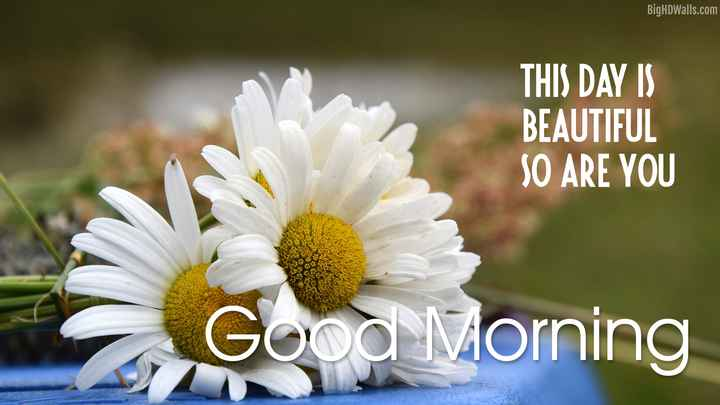 GOOD☕☕☕MORNING - BigHDWalls . com THIS DAY IS BEAUTIFUL SO ARE YOU Good Morning - ShareChat