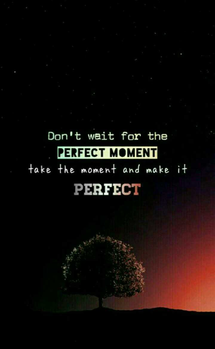 BGM സ്റ്റാറ്റസ് & ഇമേജസ് - Don ' t wait for the PERFECT MOMENT take the moment and make it PERFECT - ShareChat