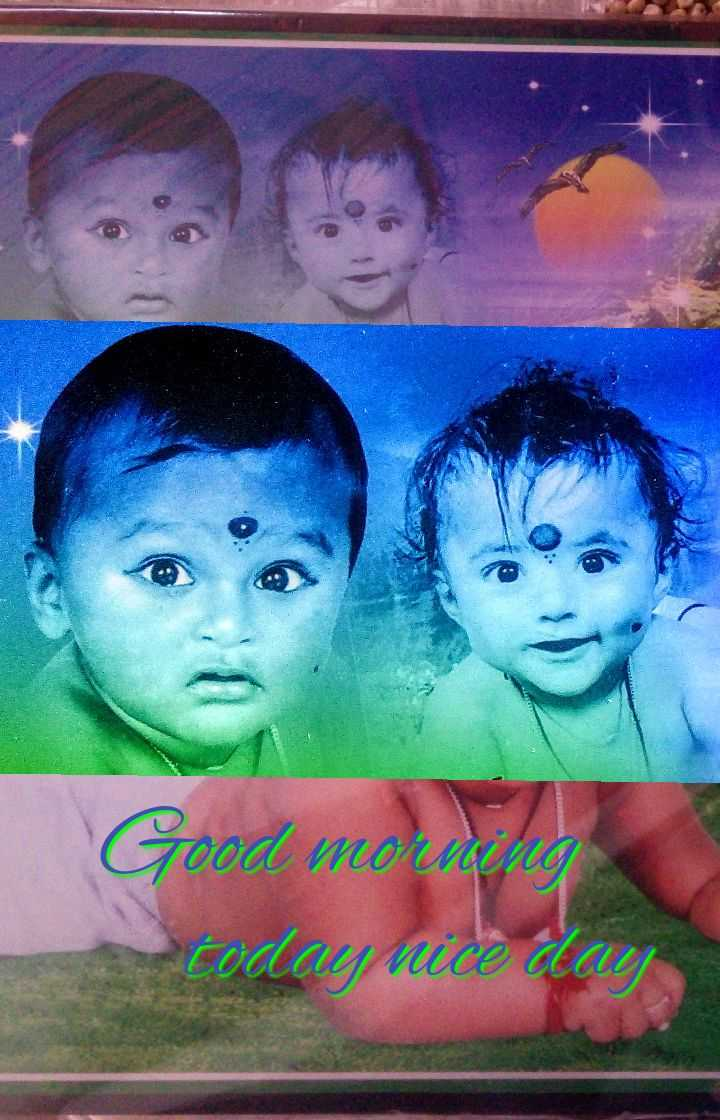 Good Morning - Good moriding  - ShareChat