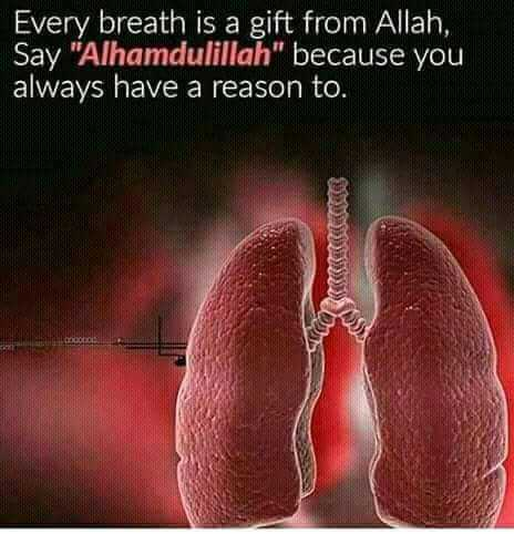 ibadath - Every breath is a gift from Allah , Say Alhamdulillah because you always have a reason to . - ShareChat