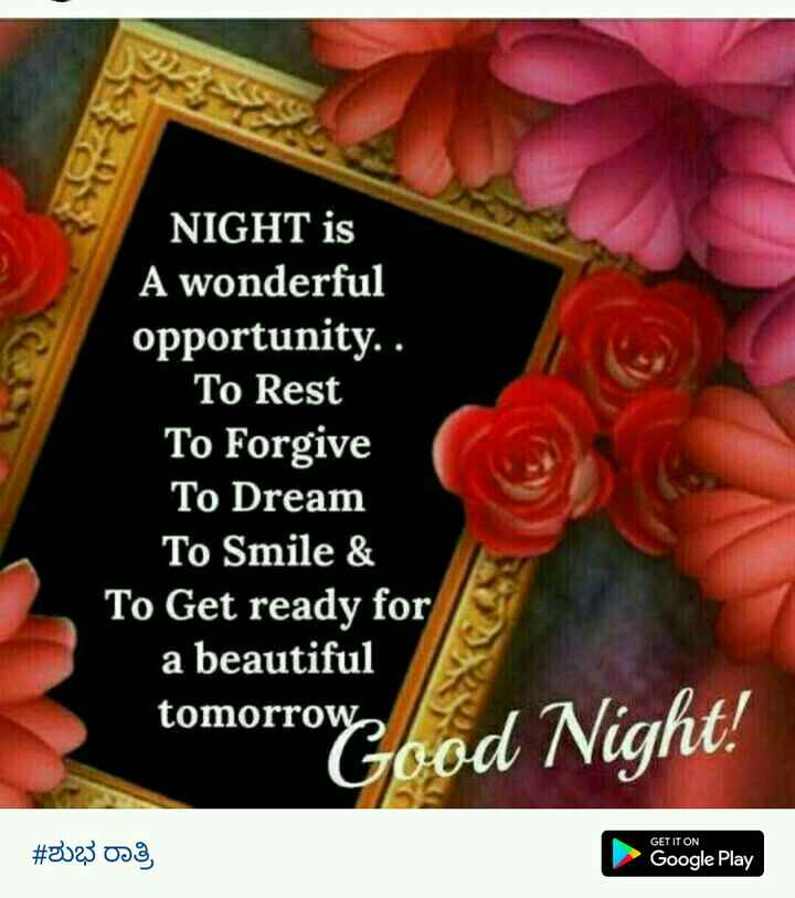 shashi - NIGHT is A wonderful opportunity . . To Rest To Forgive To Dream To Smile & To Get ready for a beautiful tomorrow Good Night ! # 2023 oo Google Play - ShareChat