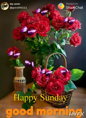 Good Morning Friends Happy Sunday Video S S Sharechat Funny