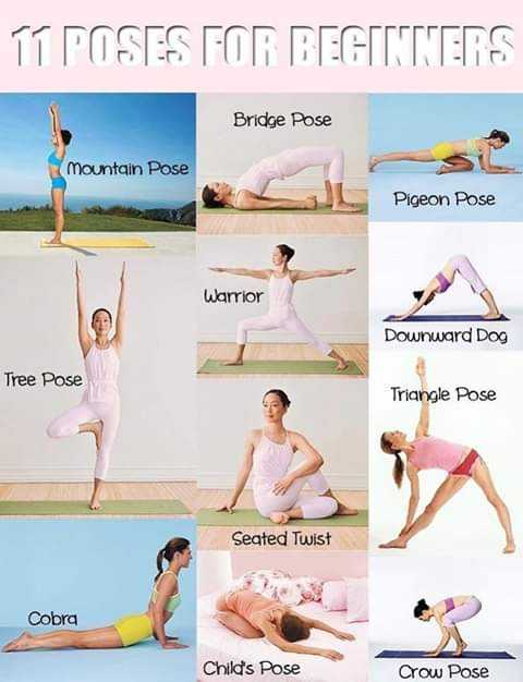 Fitness - TT POSES FOR BEGITTERS Bridge Pose mountain Pose Pigeon Pose Warrior Downward Dog Tree Pose Triangle Pose Seated Twist Cobra Child ' s Pose Crow Pose - ShareChat
