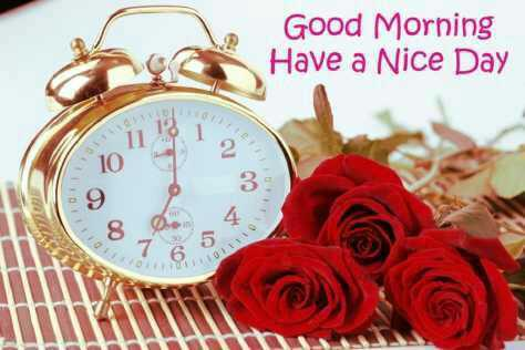 g.morning - Good Morning Have a Nice Day - 10 9 3 4 85 - ShareChat