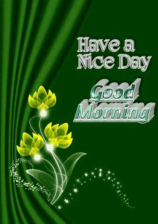 🌞Good Morning🌞 - Have a Nice Day cool Morning - ShareChat