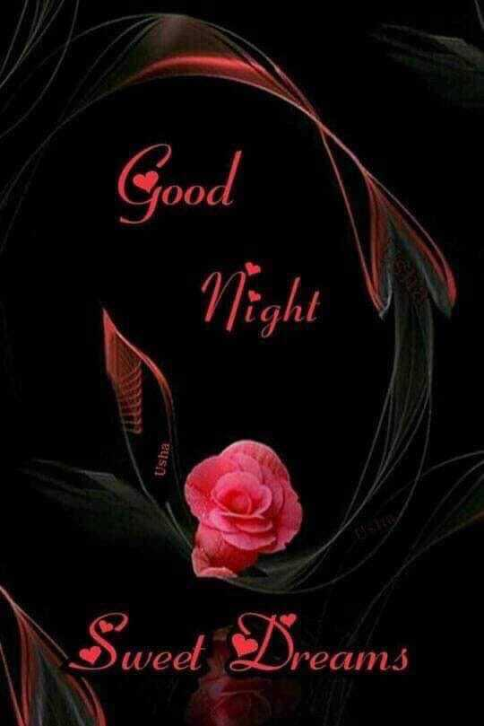 📲 વોલપેપર - Good Night Usha Swed Dreams Mean23 - ShareChat
