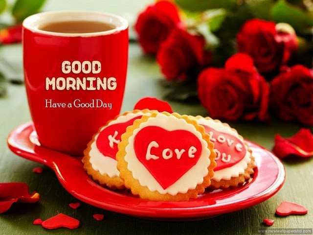 🌞Good Morning🌞 - GOOD MORNING Have a Good Day LOV Core wwwinewwallpapershd . com - ShareChat