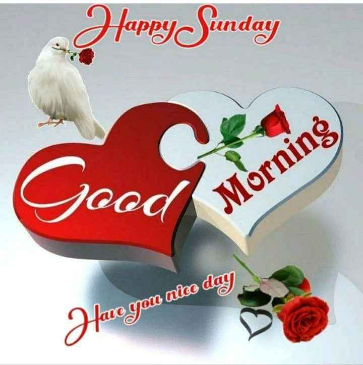 jay shree krishna suprabhat - Happy Sunday oodM Morning fave you nice day - ShareChat
