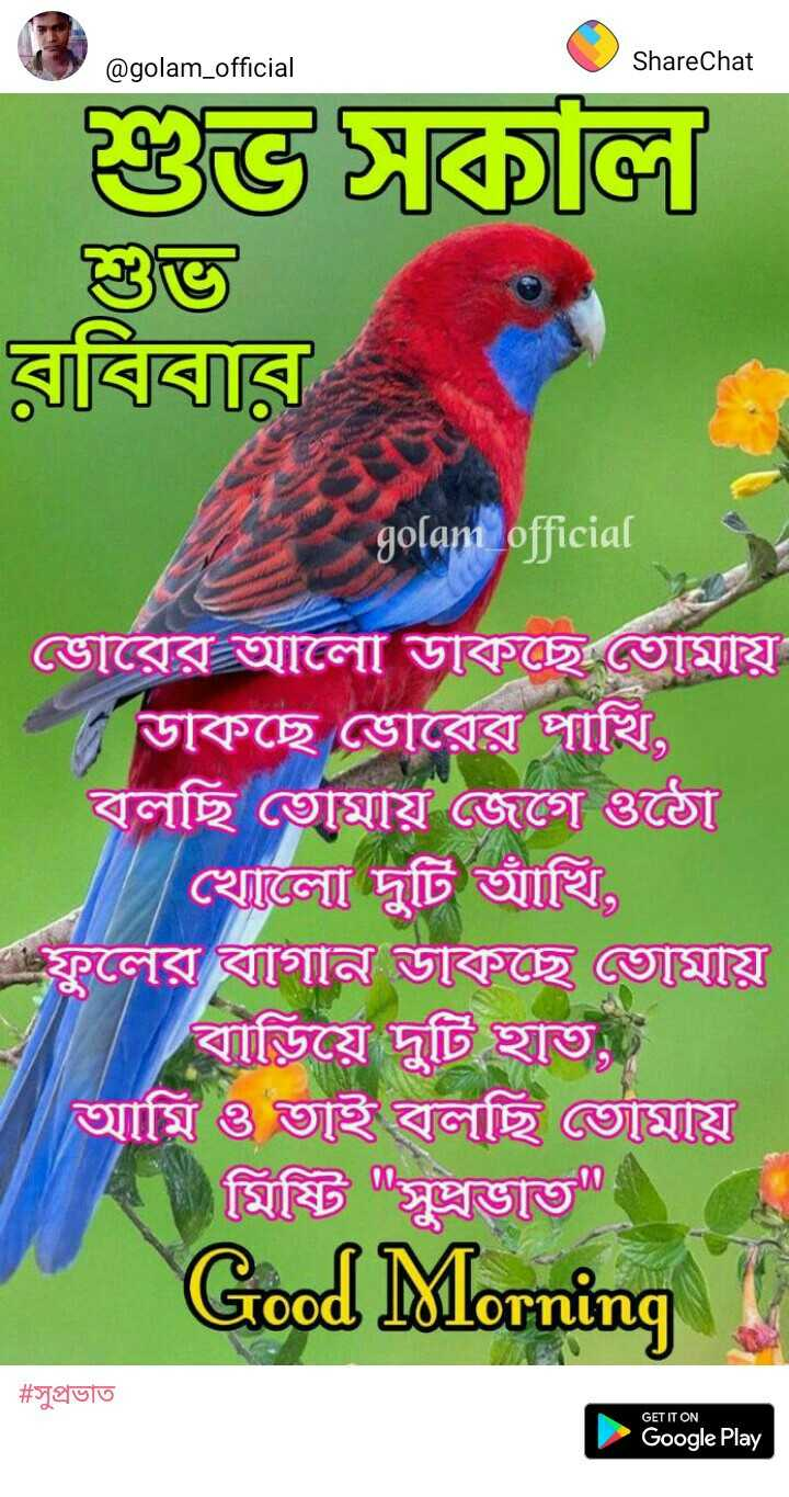 ক্রিস_গেইল - @golam official ShareChat olan ITR GET IT ON Google Play - ShareChat