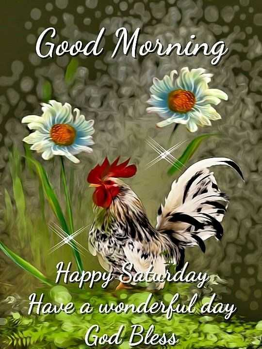 Happy Saturday Good Morning मर दनय Sharechat Hindi