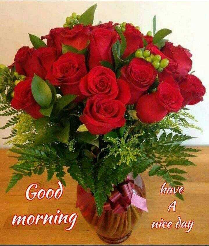 GoWdaZ - have Good morning nice day - ShareChat