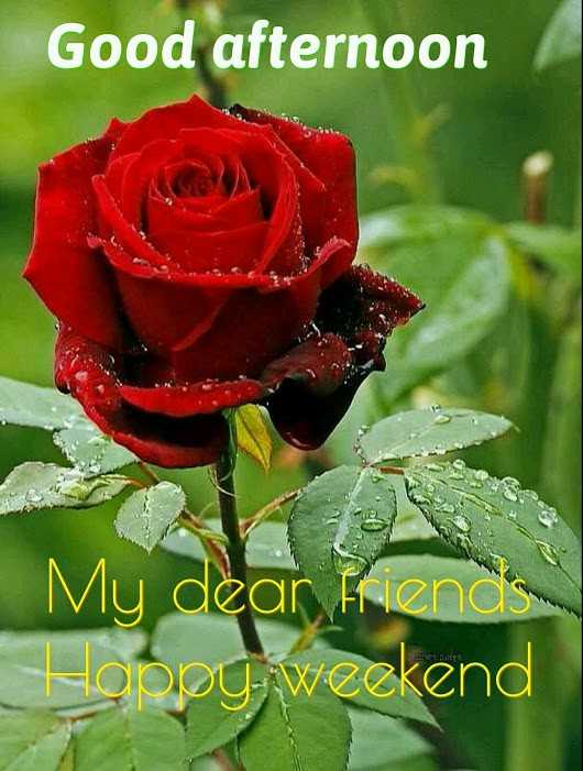 wishes - Good afternoon My dear friend Hoopy weekend - ShareChat