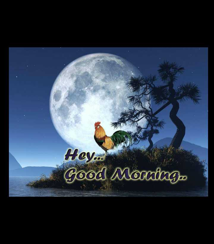 good morning - Hey . . . Good Morning - ShareChat
