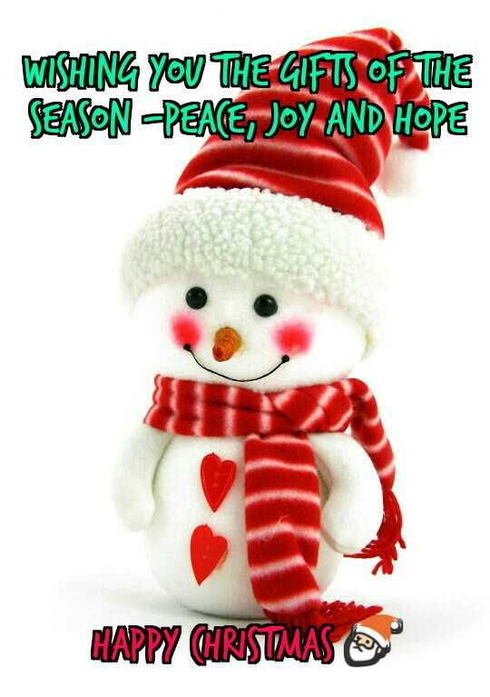 advance happy christmas - WISHING YOU THE GIFTS OF THE SEASON PEACE , JOY AND HOPE 1 HAPPY CHRISTMAS - ShareChat
