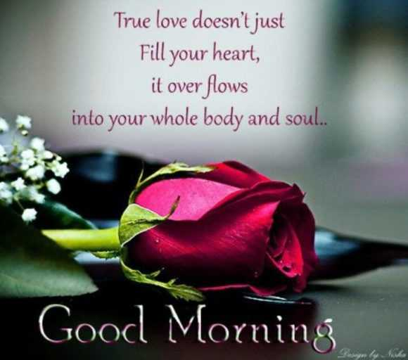 दिल की कलम से - True love doesn ' t just Fill your heart , it over flows into your whole body and soul . . Good Morning - ShareChat