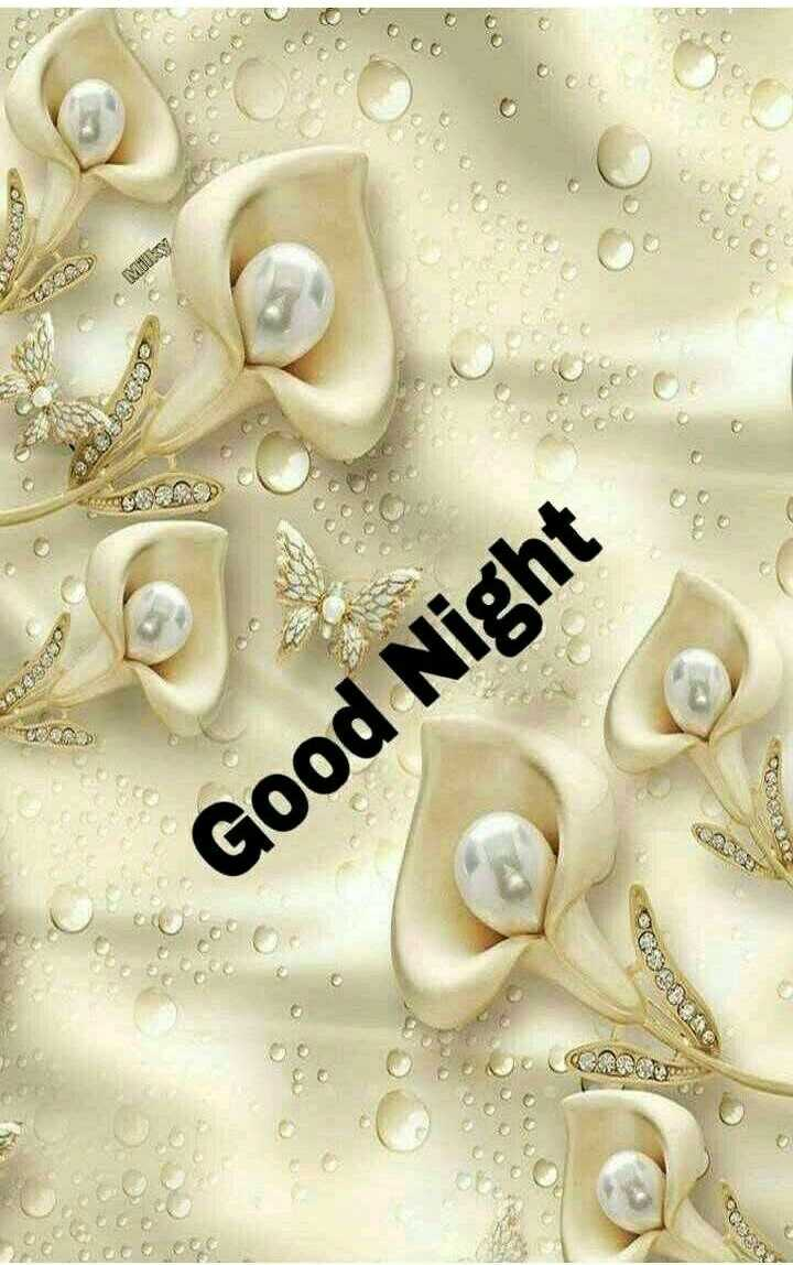 🌙शुभरात्रि - D acce WS ALDE Good Night - ShareChat