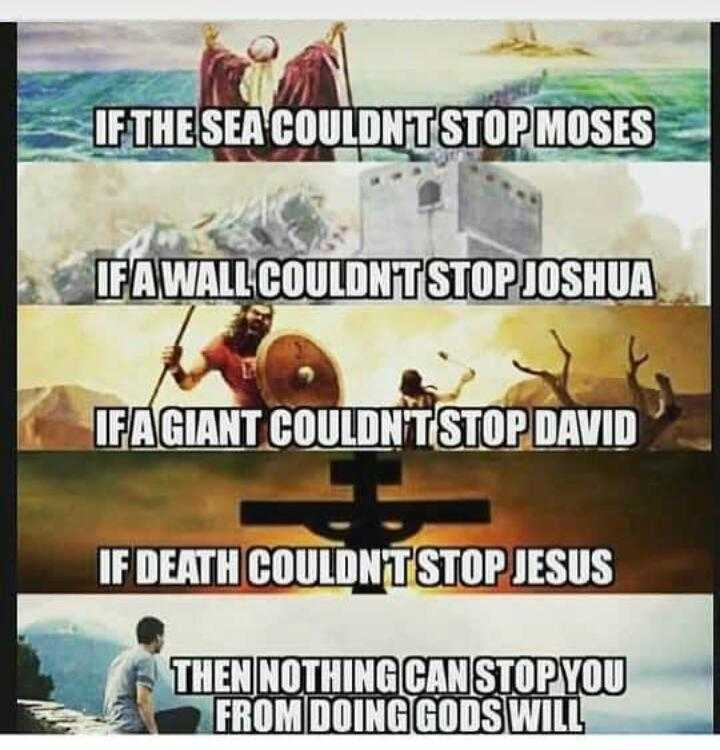 sucess - IF THE SEA COULDNTSTOP MOSES IFA WALL COULDNTSTOP JOSHUA IFAGIANT COULDN ' T STOP DAVID IF DEATH COULDNTSTOPJESUS THEN NOTHING CAN STOP YOU FROM DOING GODS WILL - ShareChat