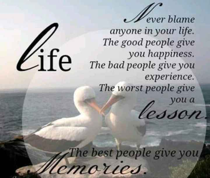 Thought of the Day - Life The basi Vever blame anyone in your life . The good people give you happiness . The bad people give you experience . The worst people give you a lesson The best people give you lemores . - ShareChat