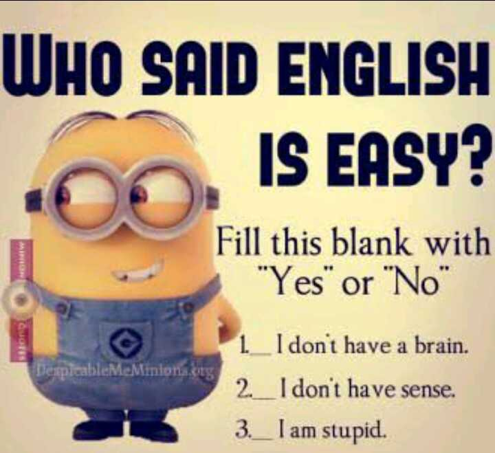 English - WHO SAID ENGLISH IS EASY ? MI Fill this blank with Yes or No Despicable Me Minions . bg 1 _ I don ' t have a brain . 2 _ I don ' t have sense . 3 . _ I am stupid . - ShareChat