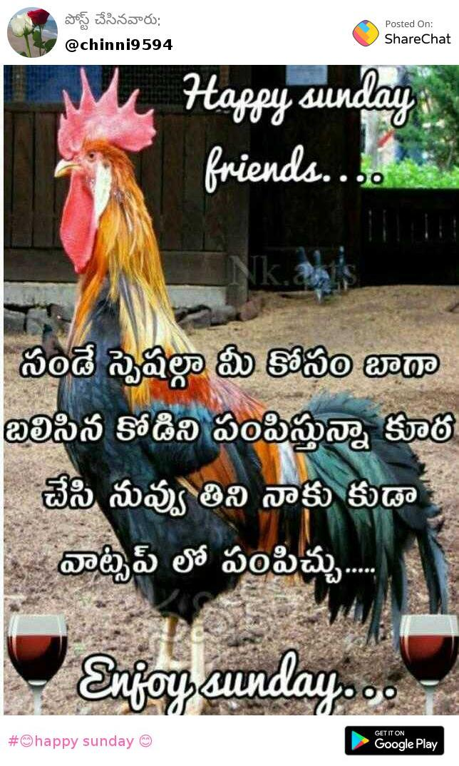 Happy Sunday Images Chinni Sharechat Funny Romantic