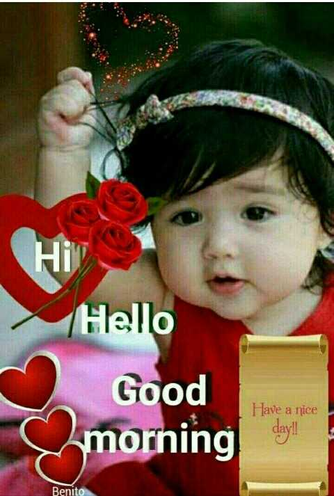 Good Morning - Hello Good Have a nice dayll s morning Benito - ShareChat