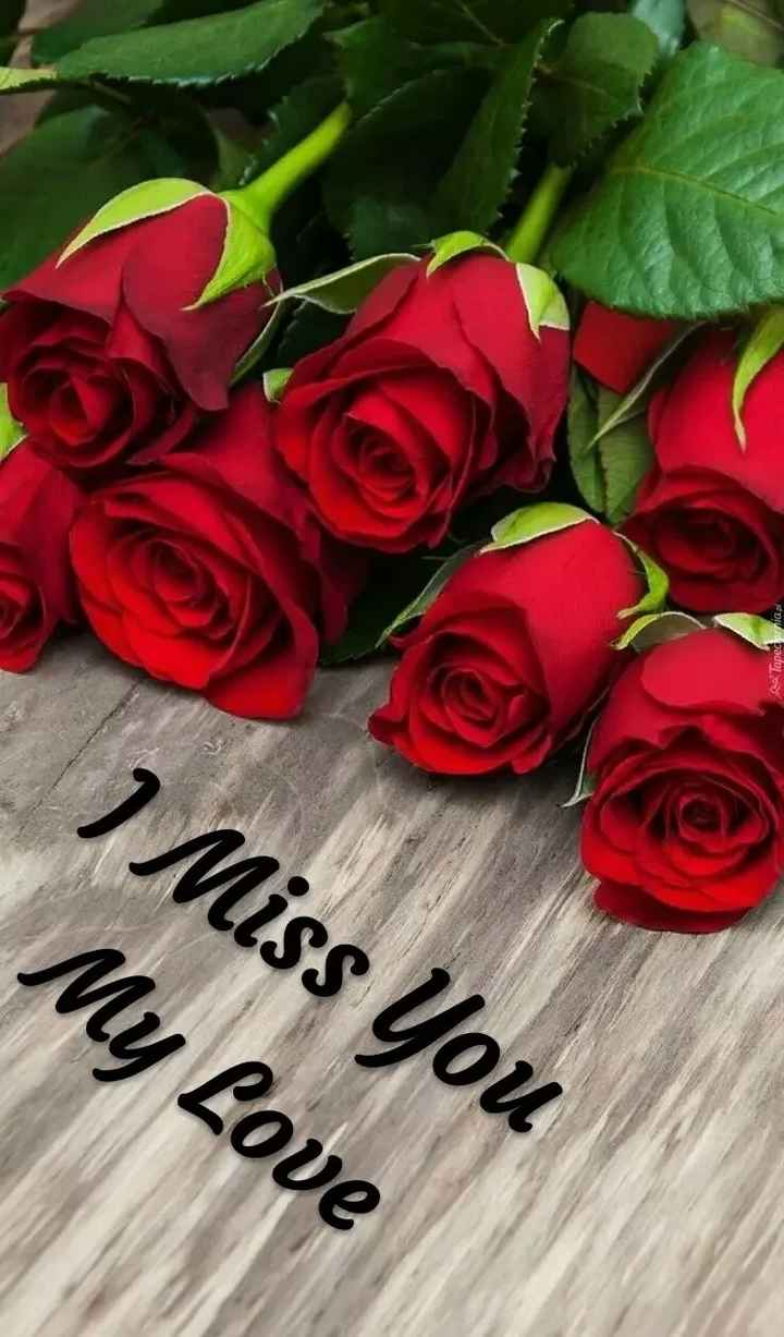 🖊️ लव शायरी ❤️ - As Tapedia . pl I Miss You My Love - ShareChat