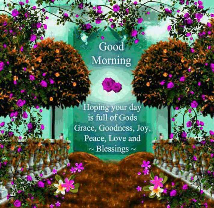 good morning - Good Morning Hoping your day is full of Gods Grace , Goodness , Joy , Peace , Love and ~ Blessings - ShareChat