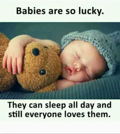 jokes - Babies are so lucky . They can sleep all day and still everyone loves them . - ShareChat