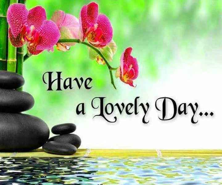 दिल की कलम से - Have a Lovely Day . . . - ShareChat