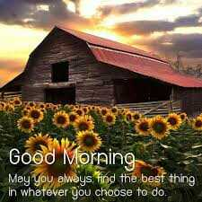 GOOD🌸🌸🌸MORNING - Good Moreing May you alweys find the besf thing in whetever choose to do - ShareChat