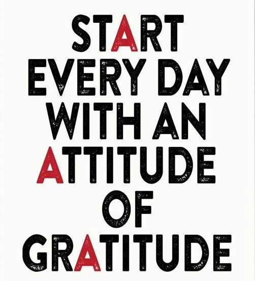 good morning friends - START EVERY DAY WITH AN ATTITUDE OF GRATITUDE - ShareChat