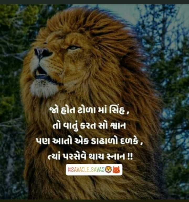 lioness Images 👑maa_mogal_krupa_03 - ShareChat - Funny