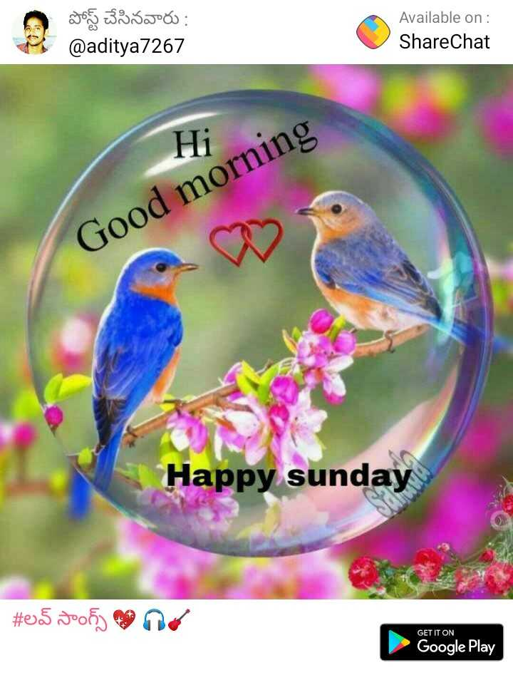 🥀🌹Good morning🌹🥀 - పోస్ట్ చేసినవారు : @ aditya7267 Available on : ShareChat Hi Good morning Happy sunday # 05 106 ) maig GET IT ON Google Play - ShareChat