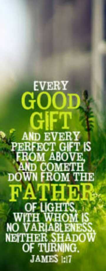 Bible words - EVERY GOOD GIFT AND EVERY PERFECT GIFT IS FROM ABOVE AND COMETH DOWN FROM THE FATHER OF LIGHTS , WITH WHOM IS NO VARIABLENESS , NETHER SHADOW OF TURNING . JAMES 1 : 17 - ShareChat