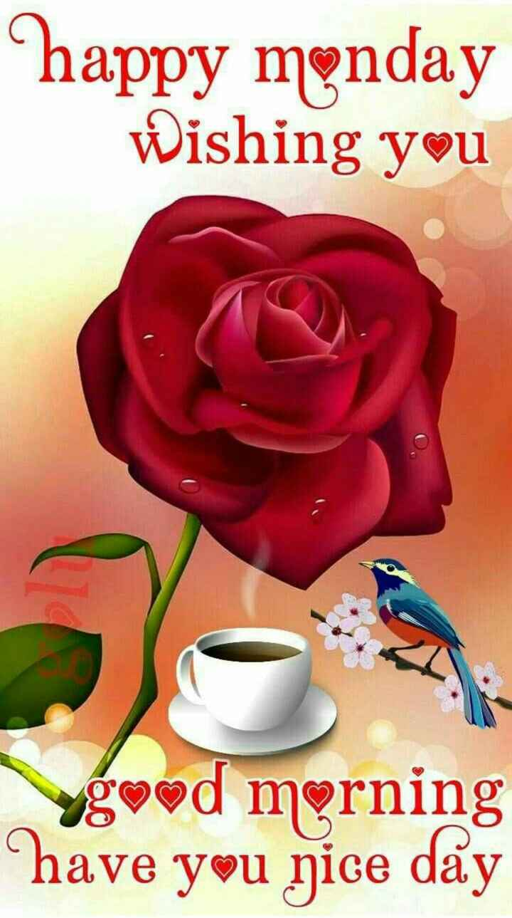 love life s - happy monday Wishing you yg od morning have you nice day - ShareChat