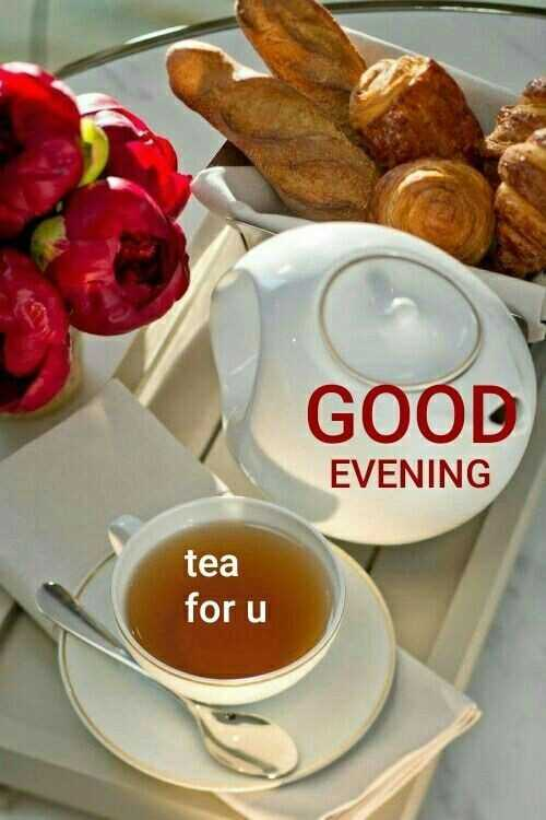 good evening 🌃 - GOOD EVENING tea for u - ShareChat