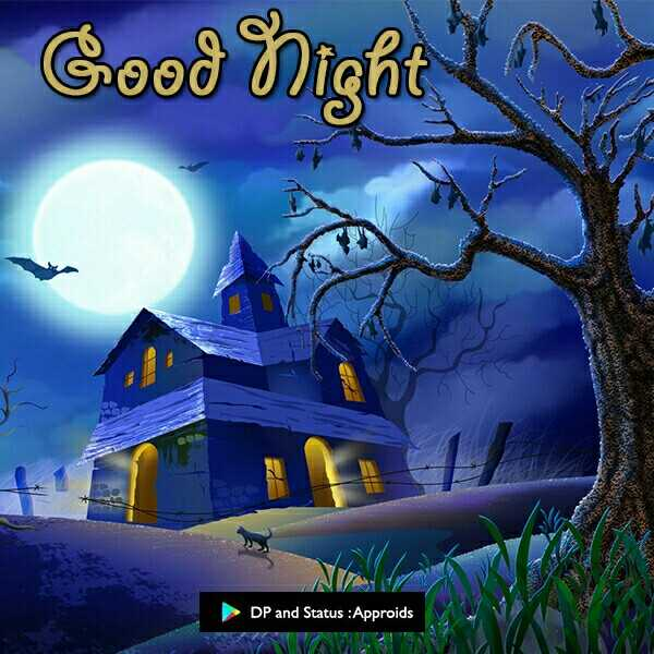 🌜good night 🌛 - ( უood int DP and Status : Approids - ShareChat