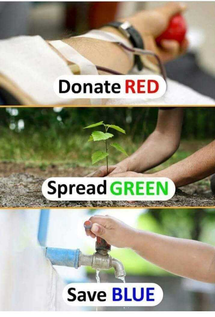 jevitha sathyalu - Donate RED Spread GREEN Save BLUE - ShareChat