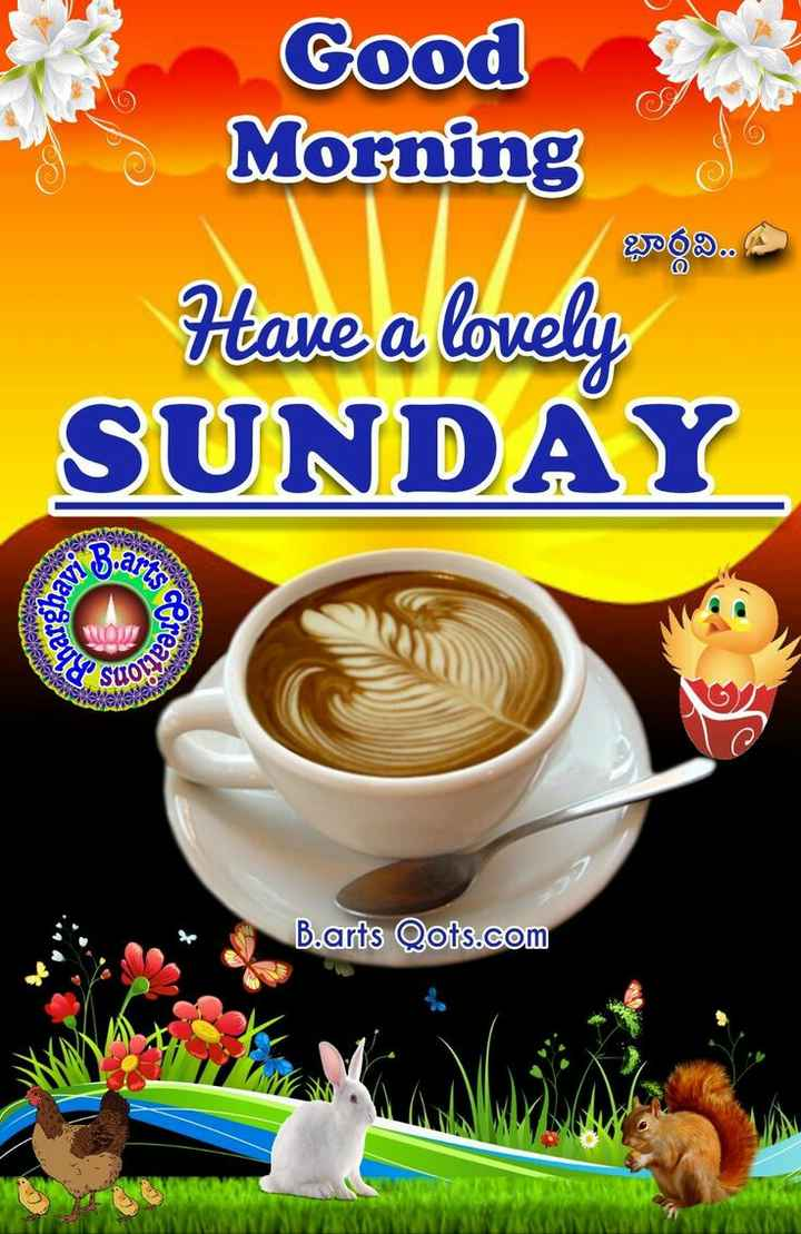 NV फनी फोटोज़ - Cood Morning Have a lovely SUNDAY Seveda hargha Nekeen Screat , suota B . arts Qots . com - ShareChat